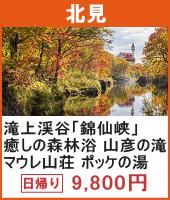 滝上渓谷「錦仙峡」散策とホテル渓谷 秋の味覚 松花堂弁当 日帰り